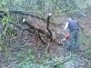 verghereto-sentieri-aprile-2012-5
