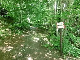 Escursione 30 Giugno 2013