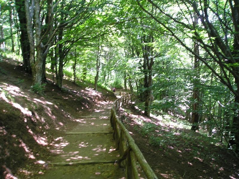 Escursione 31 Agosto 2013